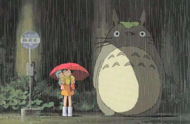 雨中的龙猫宝宝